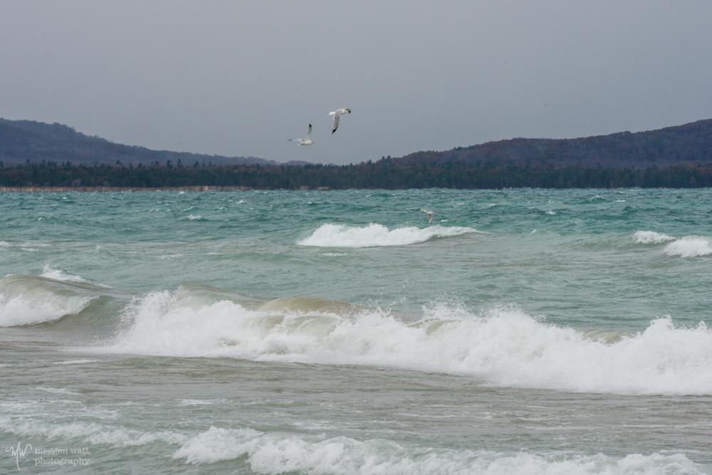 Good Harbor Windy Gulls-5140