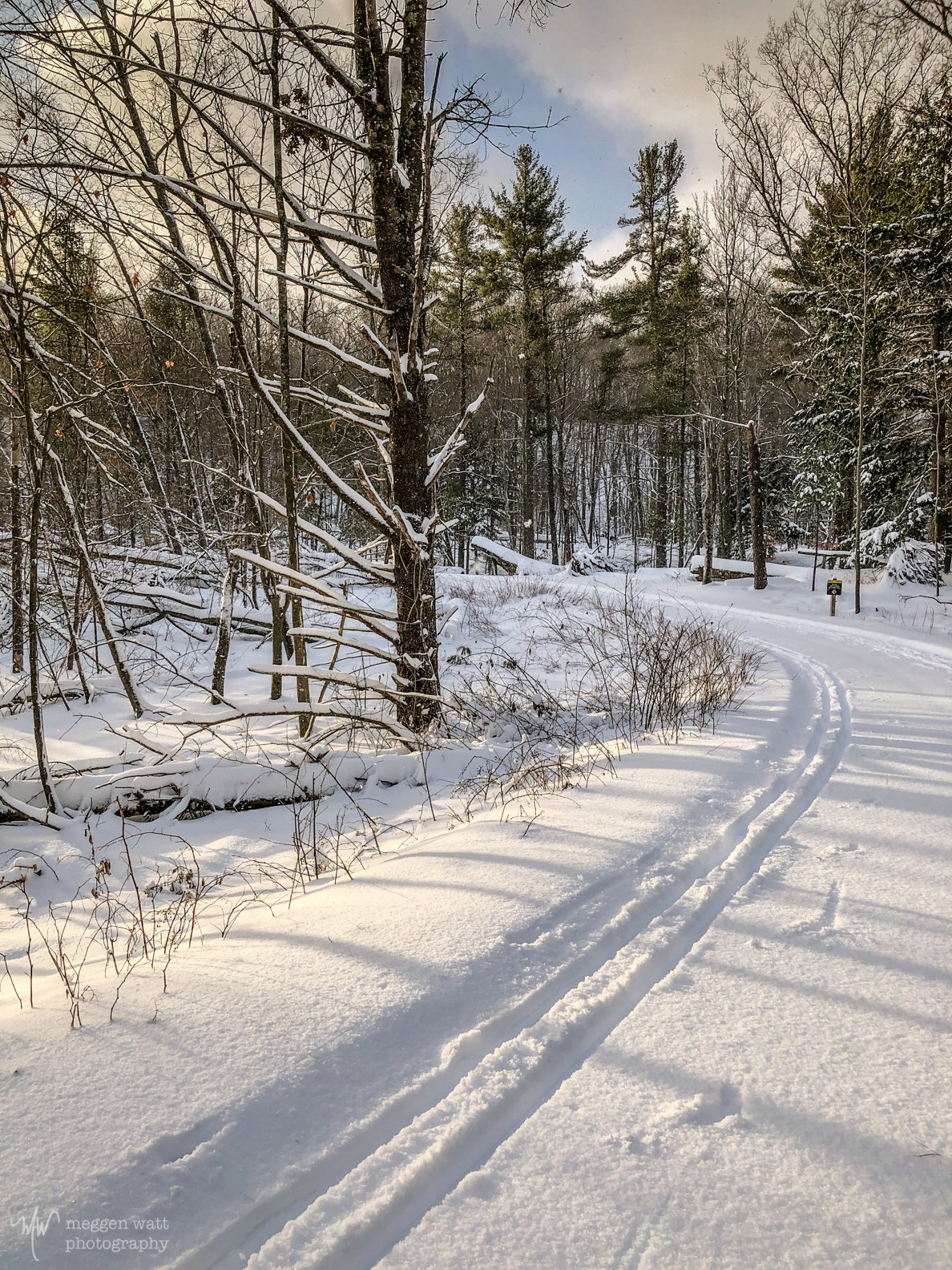 Heritage Trail Jan 19 2020-4659