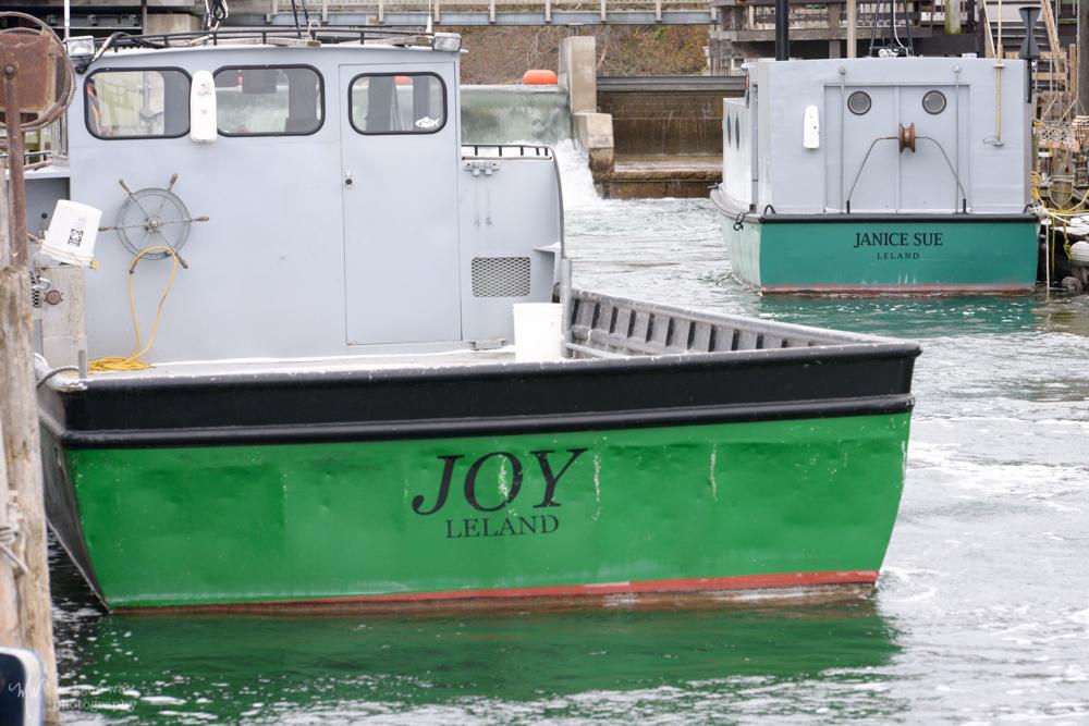 Joy And Janice-5163