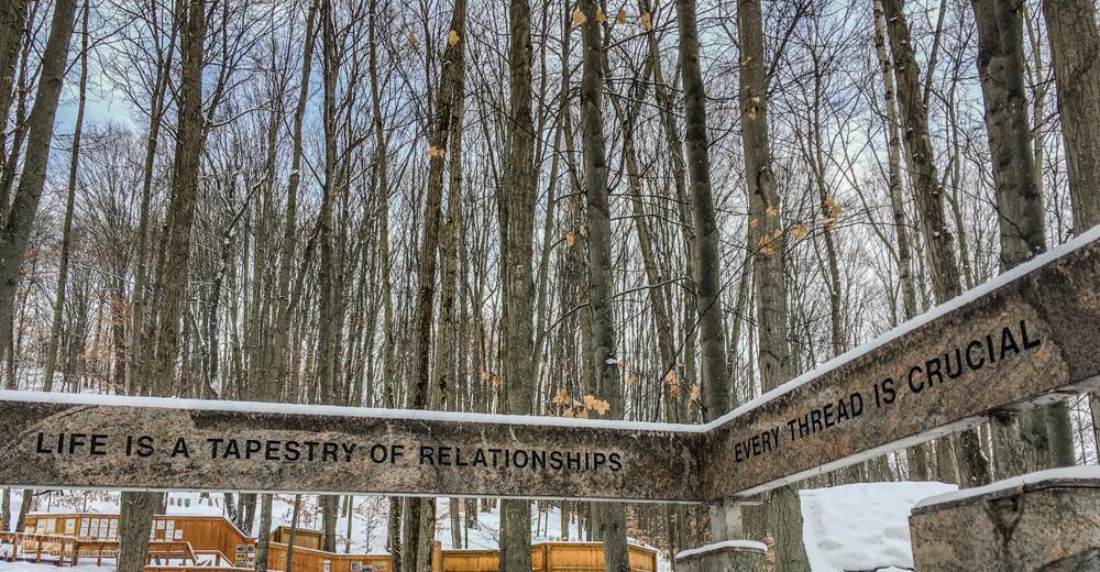 MI Legacy Art Park Snow2-9665