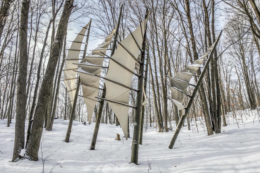 MI Legacy Art Park Snow2-9674