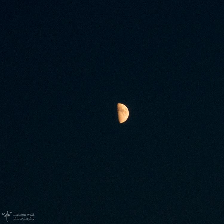 Moon-crescent-7721