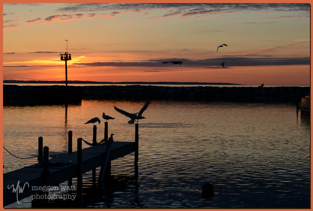 TLR-20160502-Gulls Sunset In Leland Harbor-3018