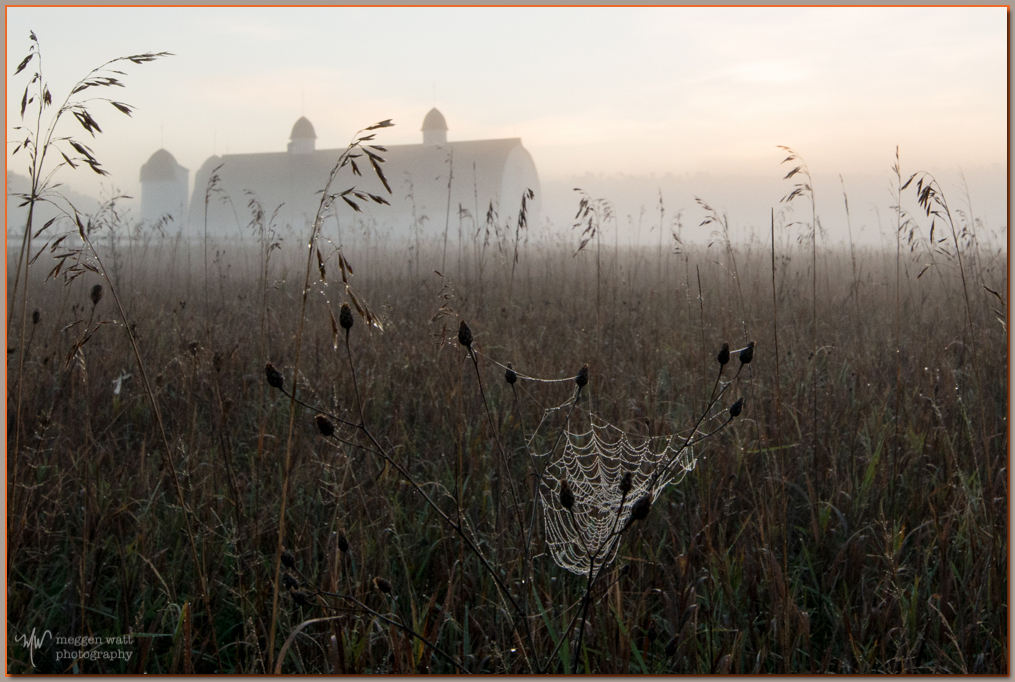 TLR-20161031-6451- DH Day Barn Spiderweb Sunrise Fog
