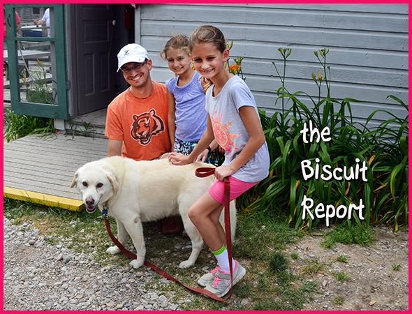 Biscuit-7-25-16