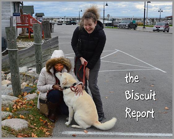 Biscuit10-27-16