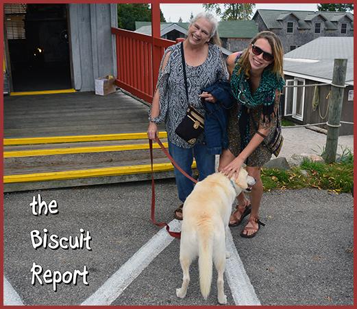 Biscuit10-7-16