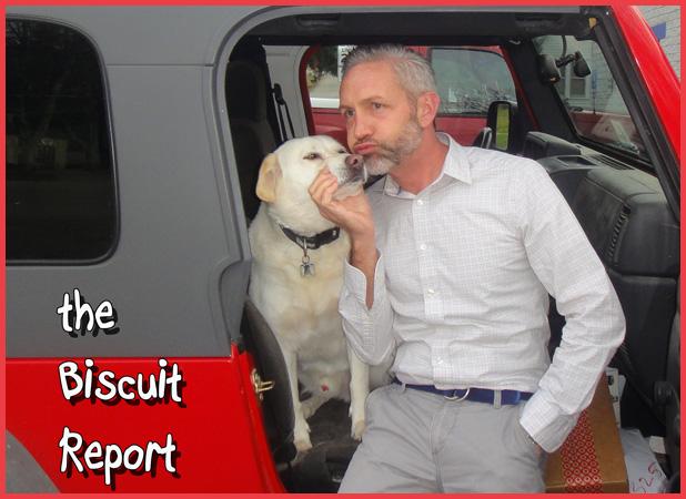 biscuit11-17-2015
