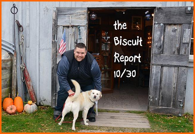 Biscuit11-3-16