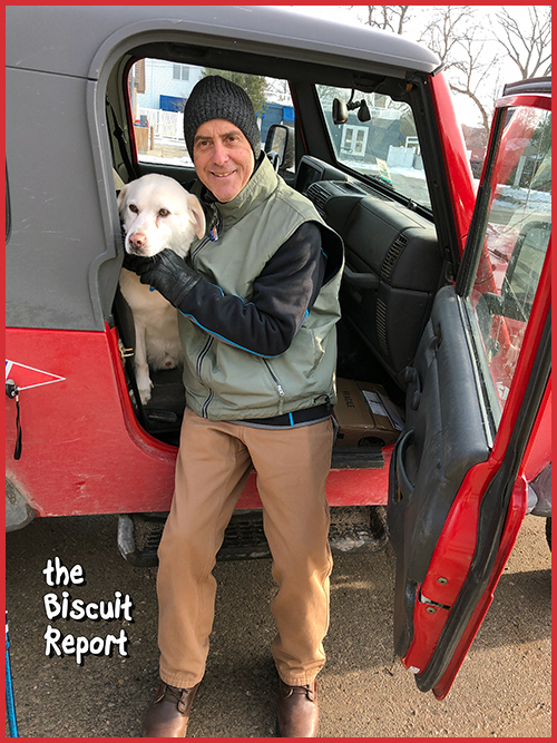 Biscuit12-11-18