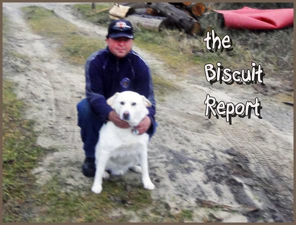 Biscuit12-16-15