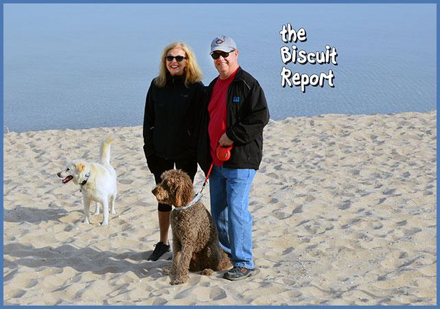Biscuit6-3-17