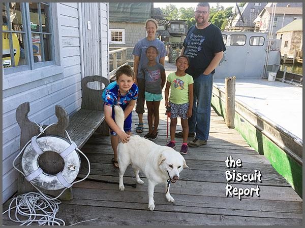 Biscuit7-6-17