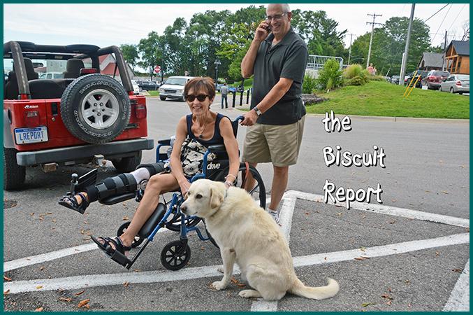 Biscuit8-19-16