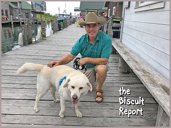 Biscuit8-19-18