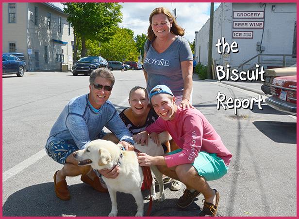 Biscuit8-21-16
