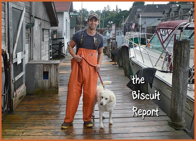 Biscuit8-24-16