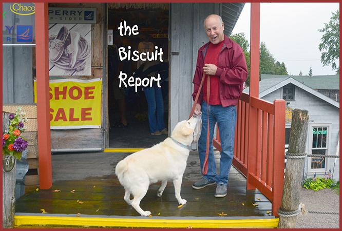 Biscuit8-27-16
