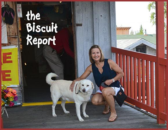 Biscuit9-14-17