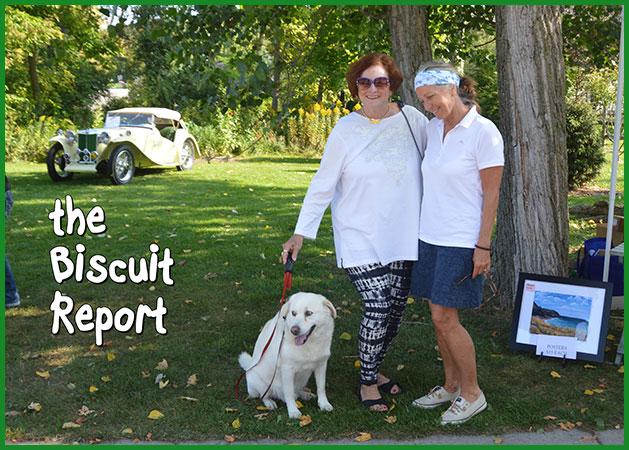 Biscuit9-16-17