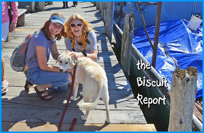 Biscuit9-19-16
