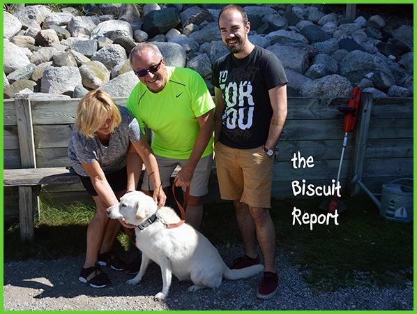 Biscuit9-3-16