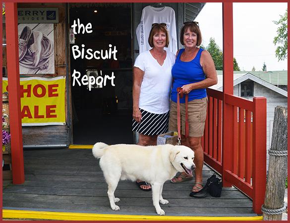 Biscuit9-7-16