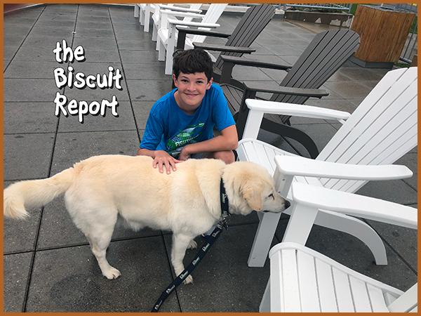 Bisquit7-21-18