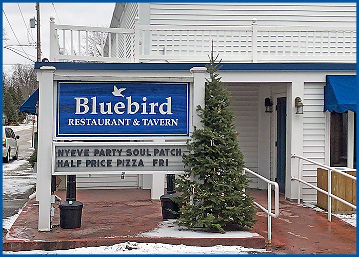 Bluebird12-22-18a