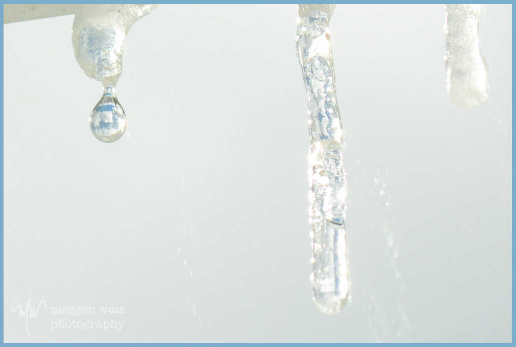 Dripping Icicle-0693tlr