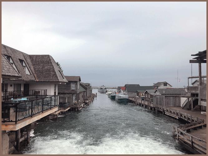 Fishtown11-4-2018