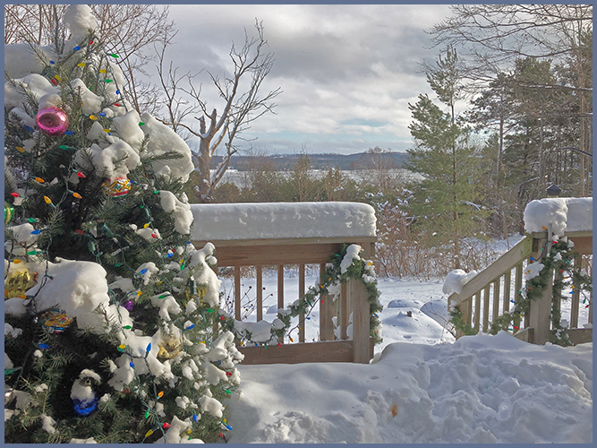 Frontporch1-3-19
