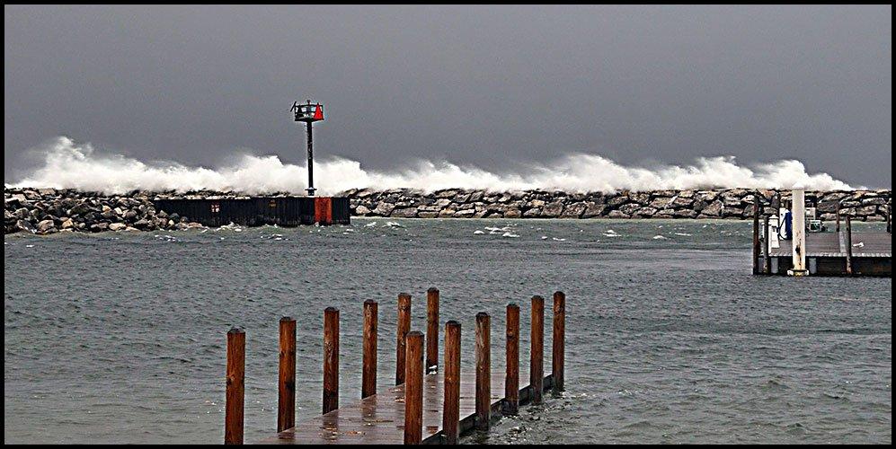 Harbor2-28-20
