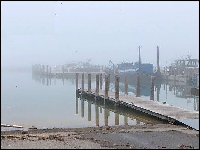 Harbor5-15-20a