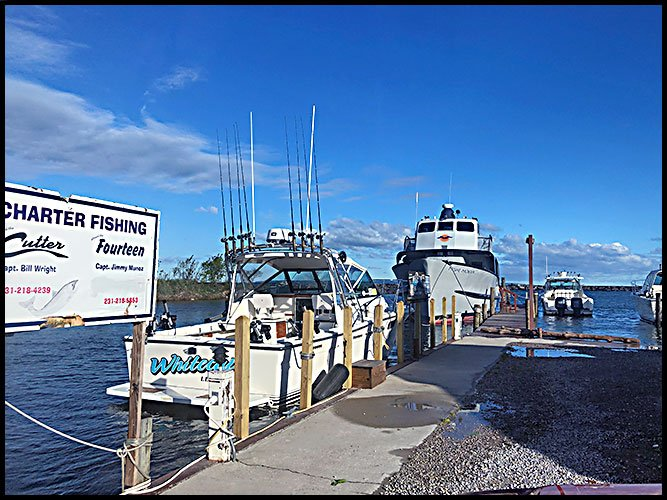 Harbor6-11-20