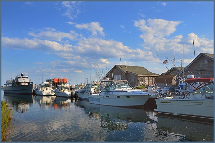 Harbor6-2-17