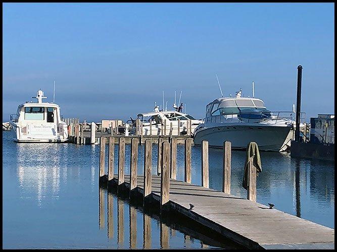 Harbor7-8-20