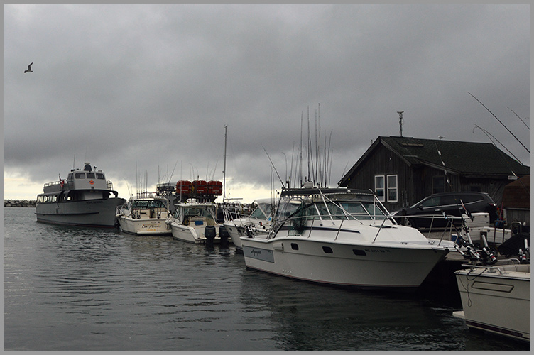 Harbor9-8-16