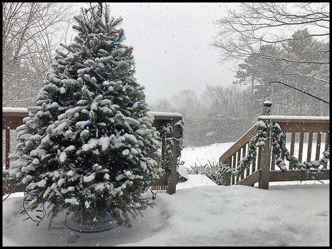 Snow1-5-20
