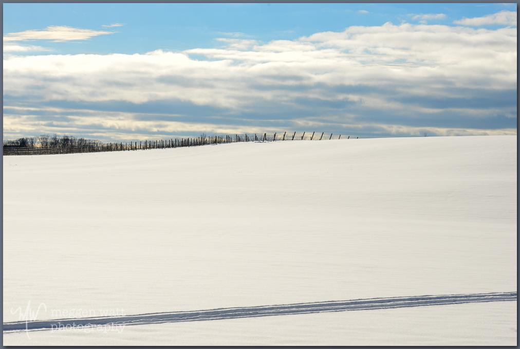 Snow Leelanau County Tracks-0213-tlr