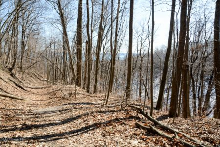 Pyramid Trail To Meadow-1668