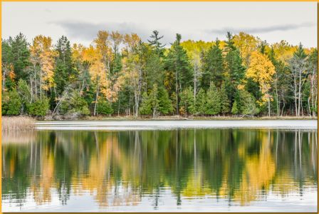 TLR-20161031-6556-bass Lake