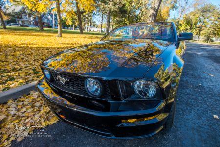 Autos JB95126
