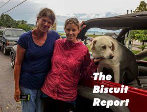 Biscuit08-02-15
