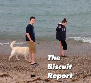 Biscuit08-03-15