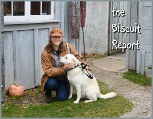Biscuit10-21-15