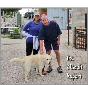 Biscuit6-13-15 1