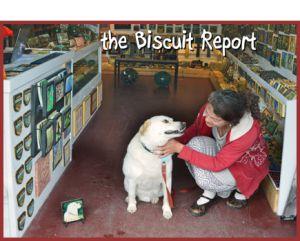 Biscuit6-14-15 1