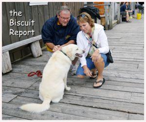 Biscuit6-26-14