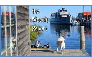 Biscuit7-16-15
